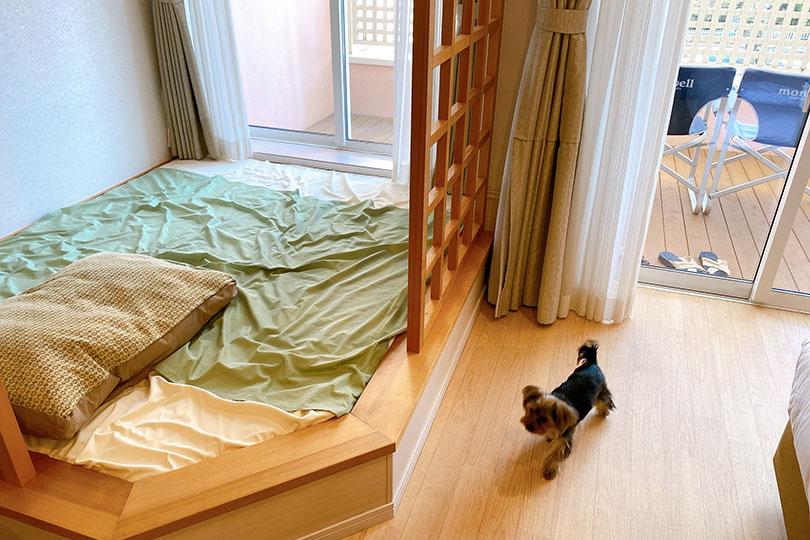 ドギーズアイランドの宿泊部屋